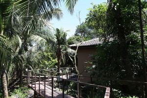 Unterkunft im Baumhaus